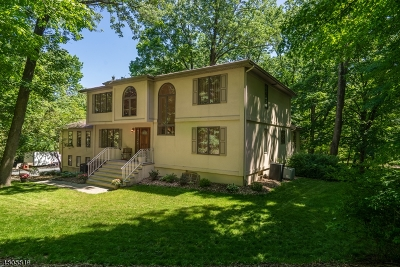 Single Family Home For Sale: 162 Old Stirling Rd