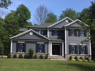 WARREN Single Family Home For Sale: 4 Birchmont Ln