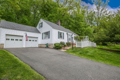 Morris Twp. Single Family Home For Sale: 27 Wood Rd