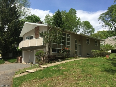 Randolph Twp. Single Family Home For Sale: 5 Nerewood Rd