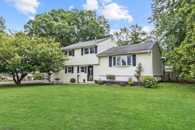 East Brunswick Twp. Single Family Home For Sale: 97 Rues Ln