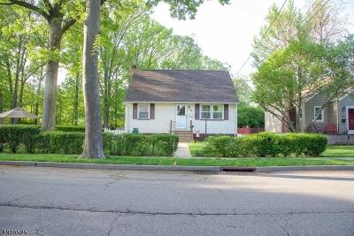 Roselle Park Boro Single Family Home For Sale: 211 E Colfax Ave