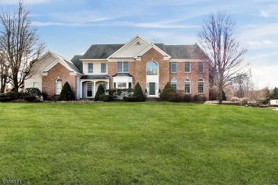 Randolph Twp. Single Family Home For Sale: 53 Quail Run