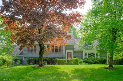 Millburn Twp. Single Family Home For Sale: 500 Long Hill Drive