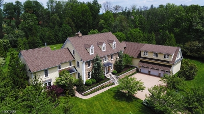 Bernards Twp. Single Family Home For Sale: 57 Overlook Ave