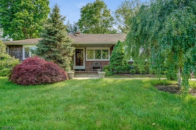 Springfield Twp. Single Family Home For Sale: 31 Midvale Dr