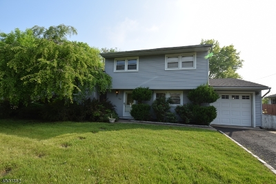 Springfield Twp. Single Family Home For Sale: 263 Milltown Rd