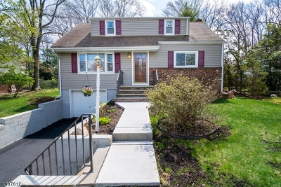 Edison Twp. Single Family Home For Sale: 97 Union Ave