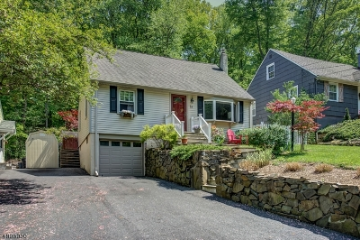 Morris Twp. Single Family Home For Sale: 34 E Lake Blvd