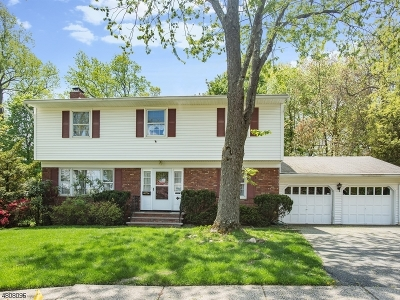 Montclair Twp. Single Family Home For Sale: 10 Fairview Pl