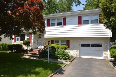 Morris Plains Boro Single Family Home For Sale: 43 W Hanover Ave