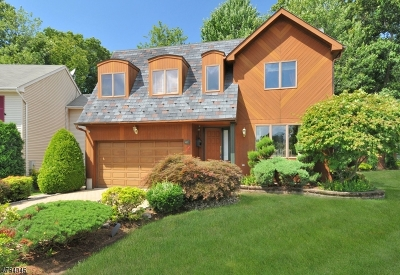 Bloomfield Twp. Single Family Home For Sale: 40 Pieretti Ct