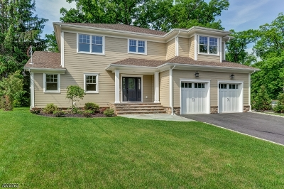 Berkeley Heights Twp. Single Family Home For Sale: 679 Plainfield Ave