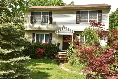 Livingston Twp. Single Family Home For Sale: 17 Sycamore Ave