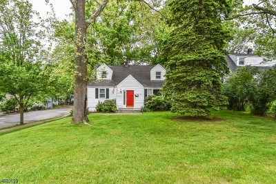 Morristown Town Single Family Home For Sale: 35 Walker Ave
