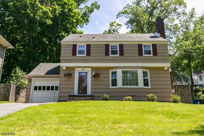Morris Twp. Single Family Home For Sale: 94 Burnham Pky