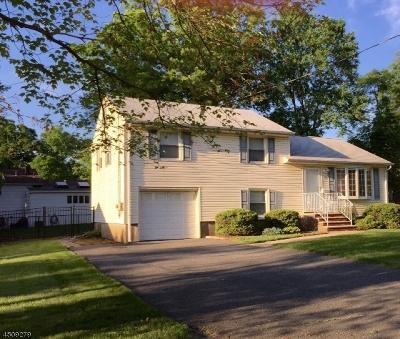 Livingston Twp. Single Family Home For Sale: 86 Amelia Ave
