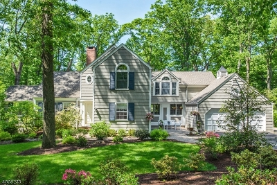 Berkeley Heights Twp. Single Family Home For Sale: 46 Winchip Rd