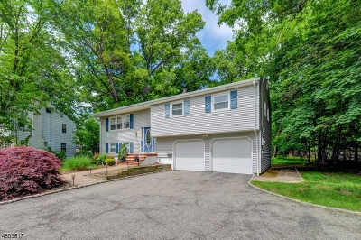 Livingston Twp. Single Family Home For Sale: 106 W Northfield Rd