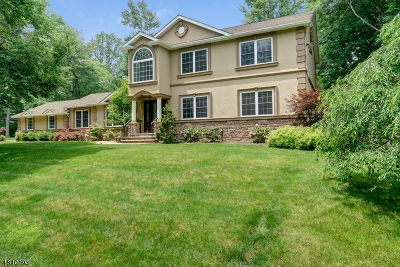 Mountainside Boro Single Family Home For Sale: 325 Timberline Rd