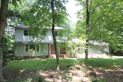 Parsippany-Troy Hills Twp. Single Family Home For Sale: 320 Park Rd