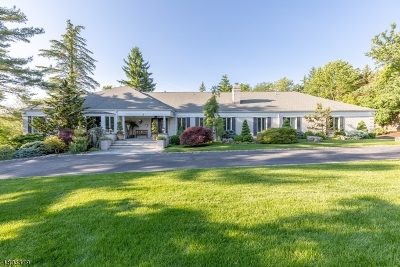 Livingston Twp. Single Family Home For Sale: 3 Culver Rd