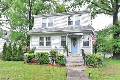 Belleville Twp. Single Family Home For Sale: 187-193 Franklin Ave