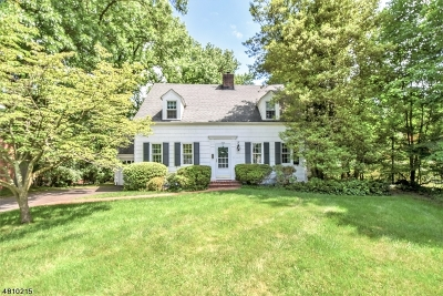 Scotch Plains Twp. Single Family Home For Sale: 845 Westfield Rd