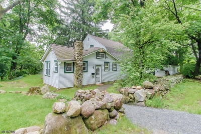 Boonton Town Single Family Home For Sale: 719 Green St
