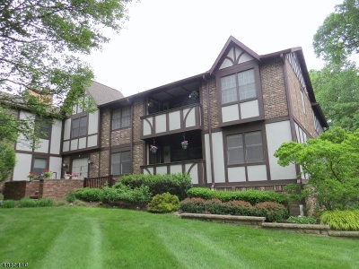 Chatham Twp. Condo/Townhouse For Sale: 1b Heritage Dr #B