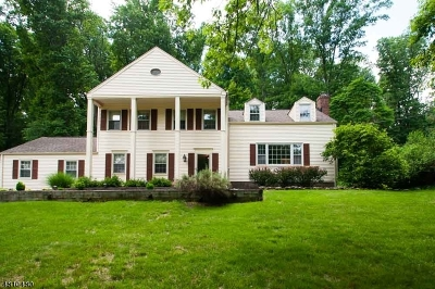 Morris Twp. Single Family Home For Sale: 36 Stonehenge Rd