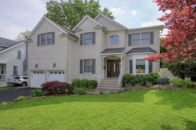 Cranford Twp. Single Family Home For Sale: 3 Broad St