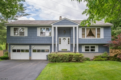 East Hanover Twp. Single Family Home For Sale: 1 Kennedy Ter