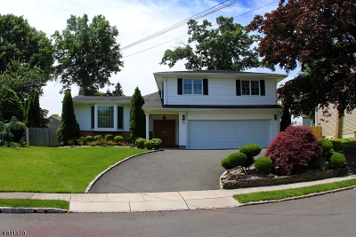 Springfield Twp. Single Family Home For Sale: 64 Golf Oval