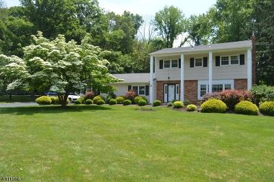 Randolph Twp. Single Family Home For Sale: 2 Ellam Dr
