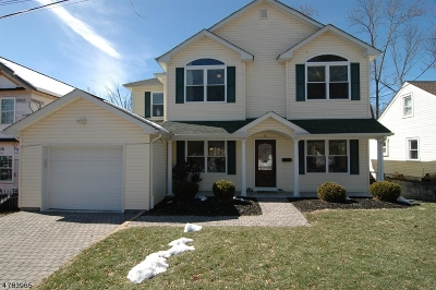 Morris Twp. Single Family Home For Sale: 6 Irondale Ave