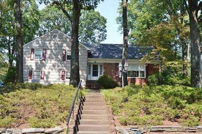 Livingston Twp. Single Family Home For Sale: 11 Belvedere Dr