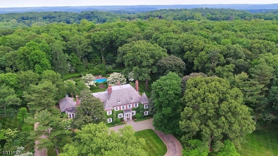Bernardsville Boro NJ Single Family Home For Sale: $3,999,500
