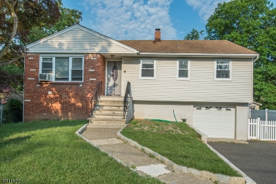 Parsippany-Troy Hills Twp. Single Family Home For Sale: 4 Washington Ave