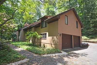 WATCHUNG Single Family Home For Sale: 45 Dug Way