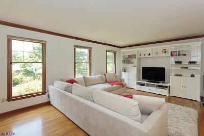 Berkeley Heights Twp. Single Family Home For Sale: 52 Highland Cir