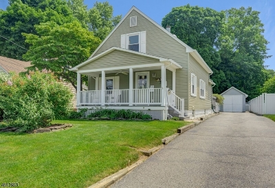 Morris Twp. Single Family Home For Sale: 17 Delmar Ave