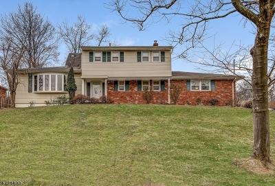 Mountainside Boro Single Family Home For Sale: 177 Chipmunk Hl