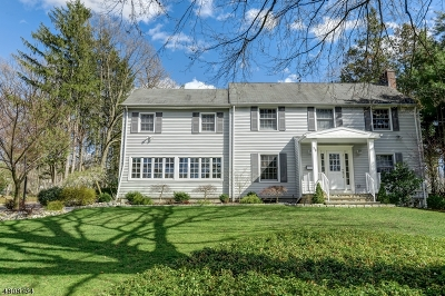 Livingston Twp. Single Family Home For Sale: 30 East Dr
