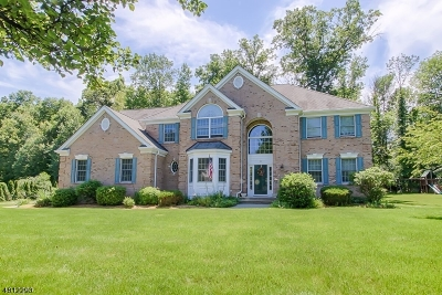 Hanover Twp. Single Family Home For Sale: 4 Parkside Dr