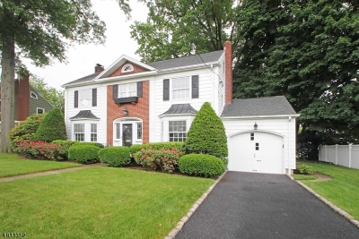 Bloomfield Twp. Single Family Home For Sale: 43 Haines Dr