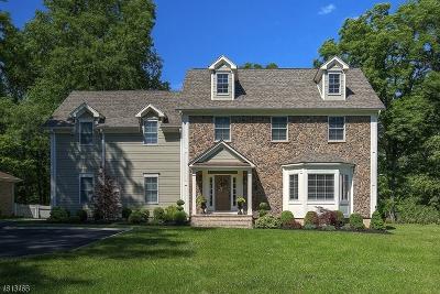 Bernardsville Boro Single Family Home For Sale: 29 Mullens Ln