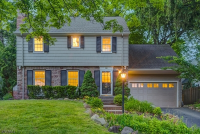 Millburn Twp. Single Family Home For Sale: 29 Haddonfield Rd