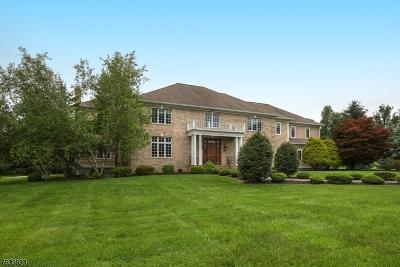 Far Hills Boro Single Family Home For Sale: 380 Minebrook Rd