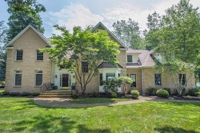 Randolph Twp. Single Family Home For Sale: 1 Barbara Dr